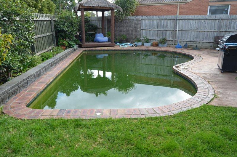 Pool restoration pool experts melbourne - How to clean a dirty swimming pool ...